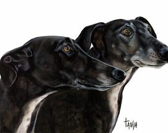 Greyhounds Nero & Lola, Art print size 8x12 inch