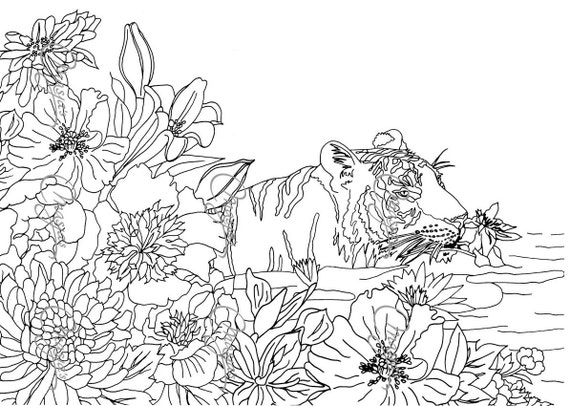 Items Similar To Masjas Nature 4 Set Of 3 Coloring Pages On Etsy
