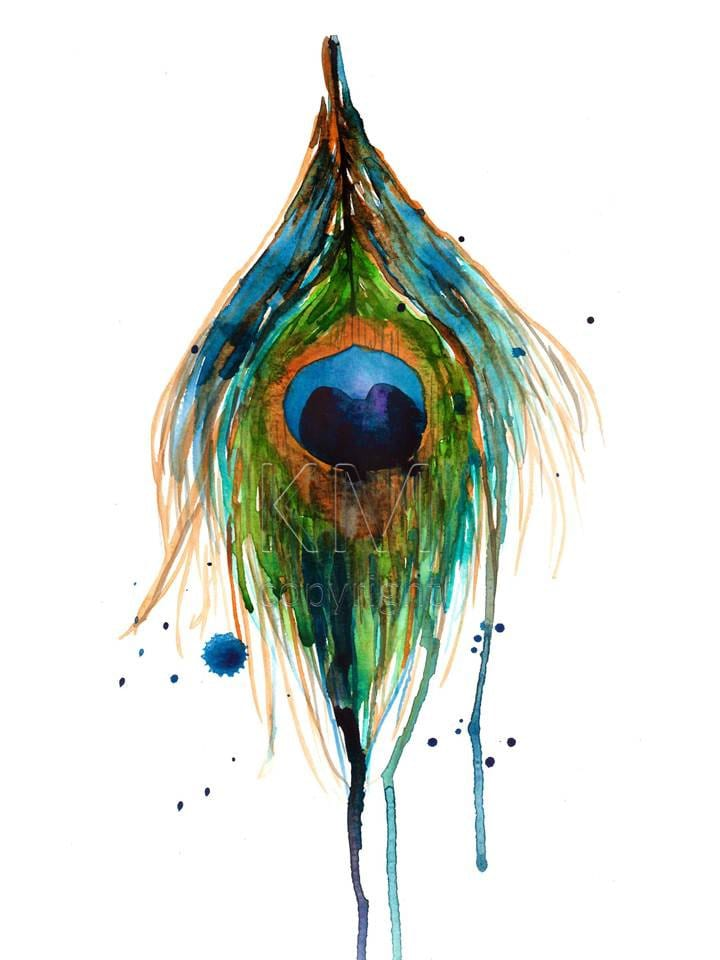 Peacock Feather Watercolor Peacock Feather Print of
