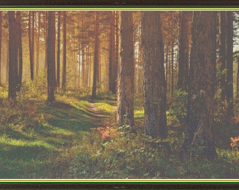 Autumn Woods, Serenity Path Thru the Fall Forest, Afternoon Lights in the Park Counted Cross Stitch Pattern