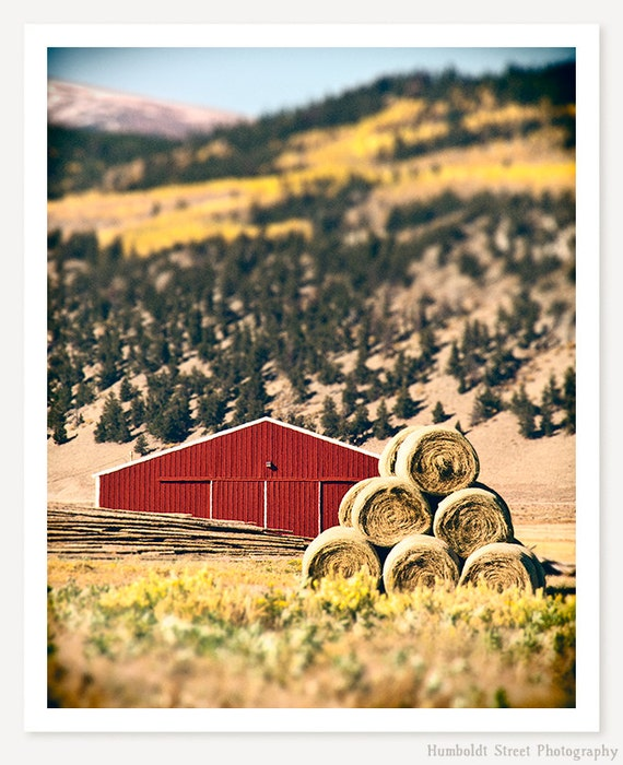 Little Red Barn - Red Barn Photograph - Farm Art - Tilt Shift Photo - Color Photography - Western Art Print
