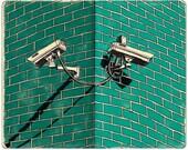 Security Cameras Print