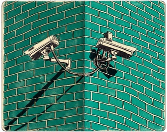 Security Cameras Print