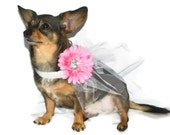 Dog Pink & White Flower Wedding Collar with Tulle, sizes 10 - 25 inches