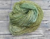 Hand Dyed Yarn - Fresh - Superwash Merino Wool Silk