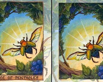 Scarab Beetle Print, Insect Art, Rainbow Decor, Ace of Pentacles Tarot Card, ACEO Card, Nature Poster, Custom Size, Animism Tarot Deck