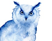 Perspicacity Owl - blue limited edition watercolour art print