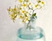 Flower Art Print, Flower Photo, Floral Photography Print, Shabby Chic Wall Art, Home Decor, Yellow Rock Cress