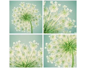 Queen Anne's Lace Prints, Set of 4 Prints, Wall Art Set, Fine Art Photographs, Teal, Aqua, Mint Green, Chartreuse, Summer Art Prints