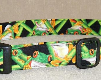 Tree Frogs  - Dog Collar