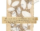 Memories -  art print -sepia and white wallart from norwegian artist Annette Mangseth