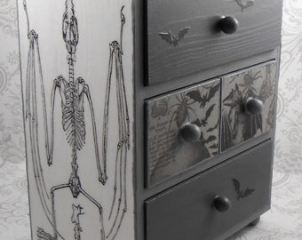 Gray Bat Skeleton Anatomy Stash Jewelry Box