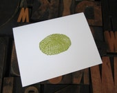 SALE Set of Six Sea Urchin  Note Cards - Gocco Printed