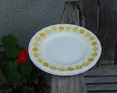 Vintage Kesington Ironstone Piccadilly Dinner Plates