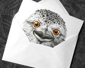 Tawny Frogmouth Greeting Card - 5x7 inch card with envelope, blank inside, bird owl wildlife australia