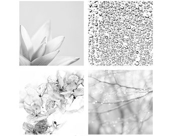 Photography gift set of four 5x5 prints Black and white Pure nature abstraction Abstract image for Ikea Ribba Neutral home decor