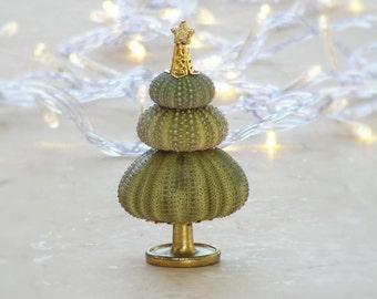Green Christmas Tree Sea Urchin Decoration Inspired by the Sea
