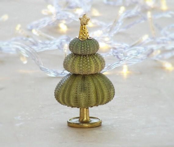 Items Similar To Green Christmas Tree Sea Urchin