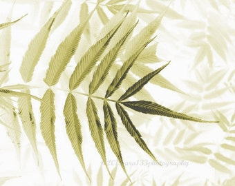Botanical Art Print, Home Decor, Cottage Decor, Nature Photography, Leaf Pattern, Neutral Wall Art - 5x7 inch Print - In Dreams
