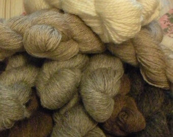 Yarn CSA  Spring of 2017 Montana Wool Twisted Fiber CSA  Minimum of 12 Skeins  Shetland Romney Cross