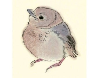 "Baby Bird Art illustration drawing -  Little Fledgling - 4"" x 6"" print - 4 for 3 SALE"
