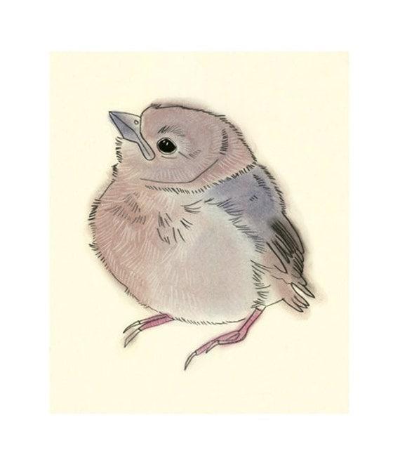 Baby Bird Art illustration drawing Little Fledgling