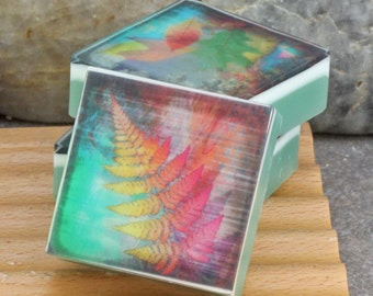 Graphic Art Soap Colorful Botanicals I - Set of 3 Guest Size Square in a Woodland Breeze Scent