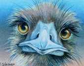 Quizzical Ostrich Miniature Art - Limited Edition ACEO Giclee Print reproduced from the Original Watercolor