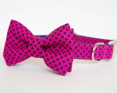 Dog Bow Tie Collar - Pink and Navy Polka Dots