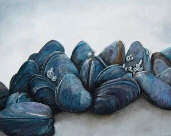 Mussels Seashell Paintings - Nautical Ocean Shells on Coastal Rocks Large Textured Wall Art