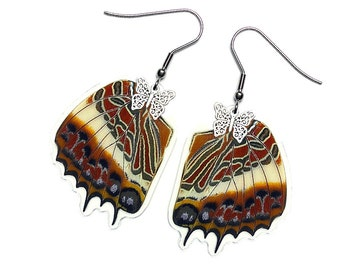Real Butterfly Wing Earrings (Brutus HW - E128)