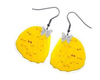 Real Butterfly Wing Earrings (Pheobis Philea HW - E174)