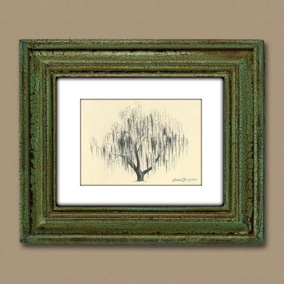 Weeping Willow Tree Drawing Aurora No 2 in Natural