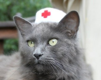 Nurse Cat Hat - Vintage Syle Pet Nurse - Pet Halloween Costume - Cat Photo Prop