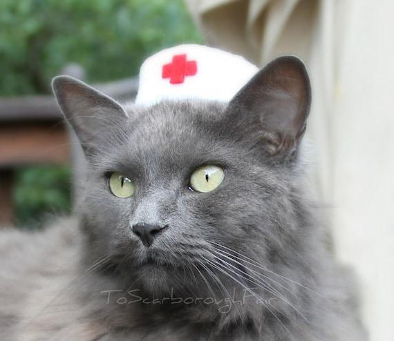 Nurse Cat Hat - Vintage Syle Pet Nurse - Pet Halloween Costume - Cat Photo Prop