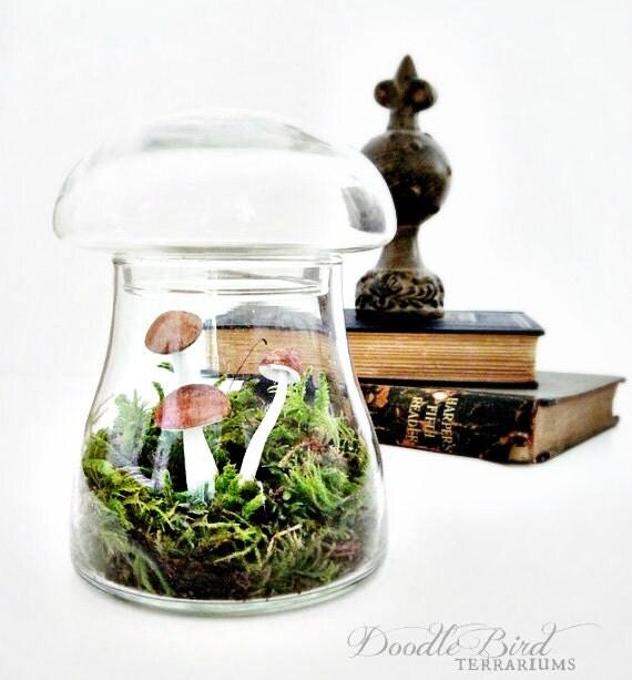 Toadstool Terrarium: Vintage Mushroom Apothecary Jar
