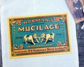 8 x 10 Victorian glue ad cotton gift bag, Victorian dog ad