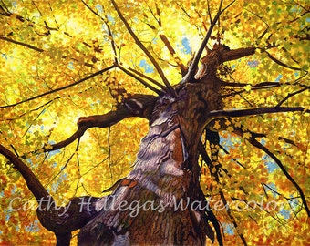 Gold tree watercolor painting print, by Cathy Hillegas, 8x10 art print, autumn colors, yellow maple tree, watercolor print, watercolor tree