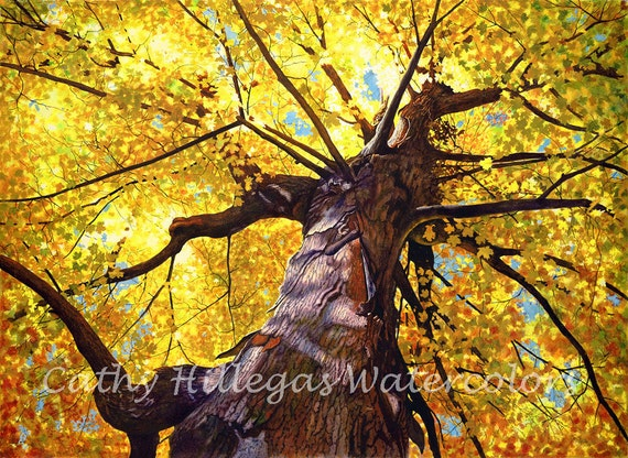 Gold tree watercolor  painting print, by Cathy Hillegas,Transcendence, autumn, fall, yellow, orange, red, green, brown, purple, blue, maple
