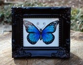 Butterfly No. 4 Original by Cora Rountree