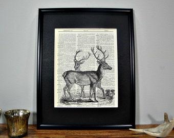 FRAMED Vintage Dictionary Print - Woodland Series - A Pair of Deer