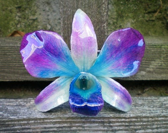 Free Shipping REAL Natural Magenta Purple, Radiant Orchid and Teal Blue ORCHID Pin and Pendant