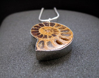 chocolate ammonite necklace in thick silver. mens necklace.