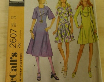 1970s Raglan Dress with Hip Godetts 12  McCalls 2607