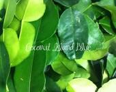 Organic Dried Home Grown Kaffir Lime Leaf Herbs Aromatic