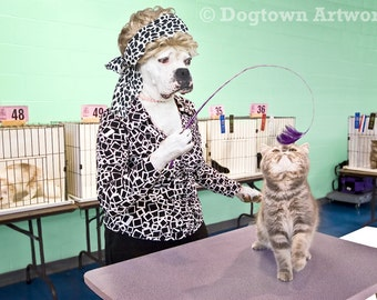 Cat Show Judge, large original photograph of a white boxer dog wearing clothes and judging a cat show