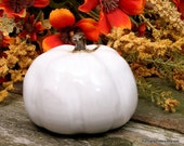 White  Pumpkin Ceramic Pottery Fall Harvest  Autumn Hand Sculpted (3W)