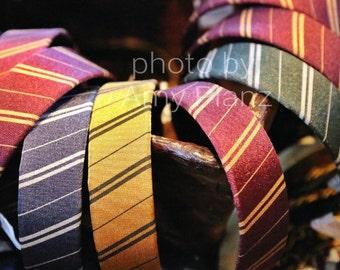 5x7 Harry Potter Inspired Headbands Photo