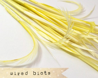 10 bundles - 25-30pcs - LIGHT YELLOW - Goose Biots on Wire - could be curled - premium millinery supply, fishing supply, fly tying