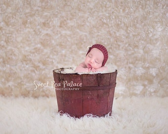 Newborn Baby Photography Prop Digital Backdrop for Photographers -Shabby Roses